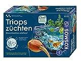 KOSMOS 633097 Triops züchten, Urzeitkrebse erleben! Das Einsteiger-Set.Komplett-Set mit Eiern, Futter und Sand. Experimentierkasten
